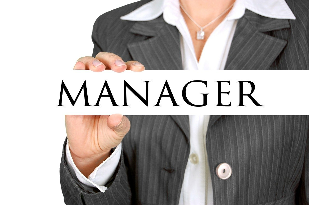 manager-454866_1280